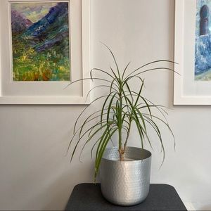 """🆕 IKEA 7.5"""" hammered silver plant pot"""
